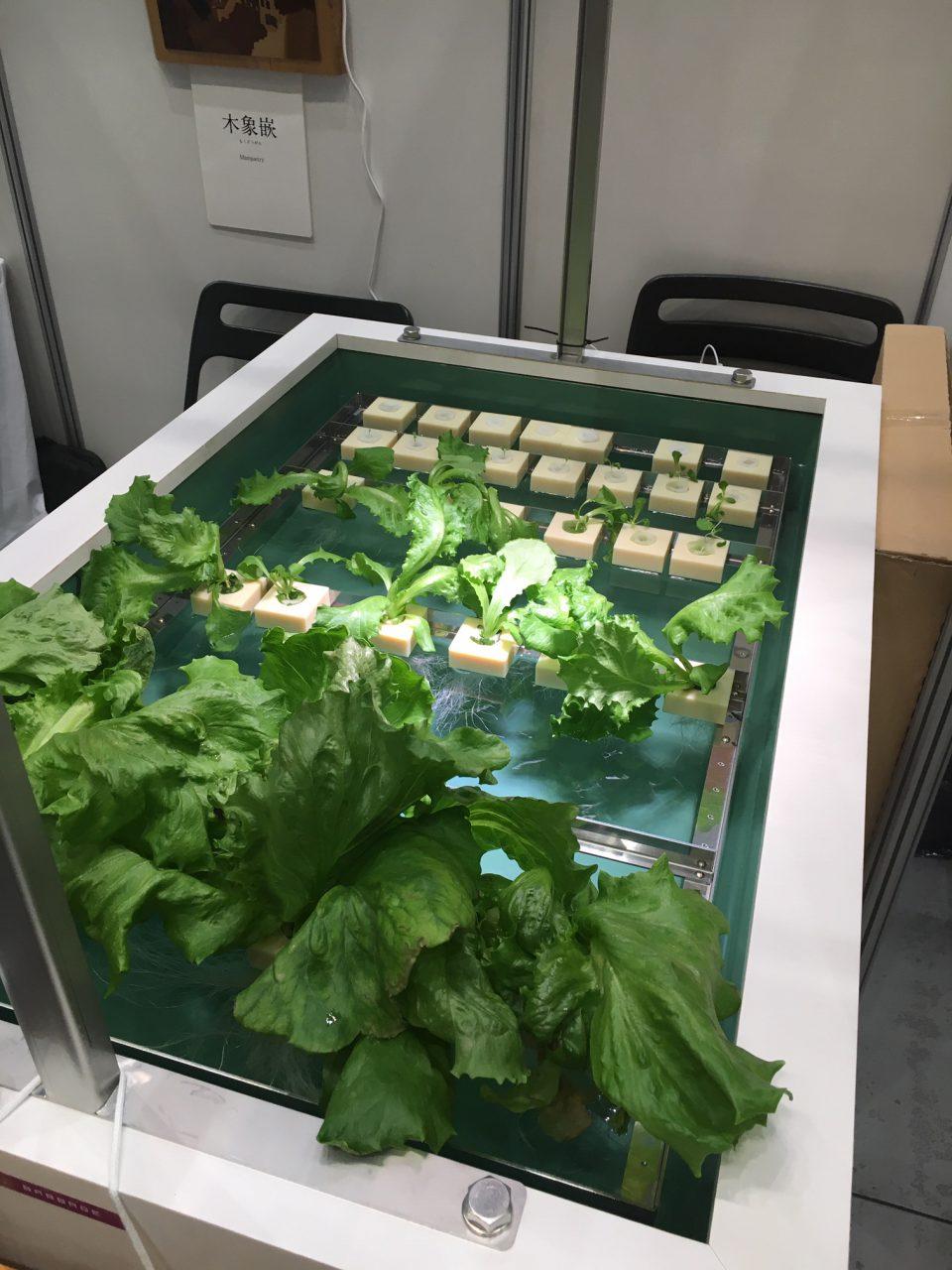 手間のかかる水耕栽培器の販売を開始しました。